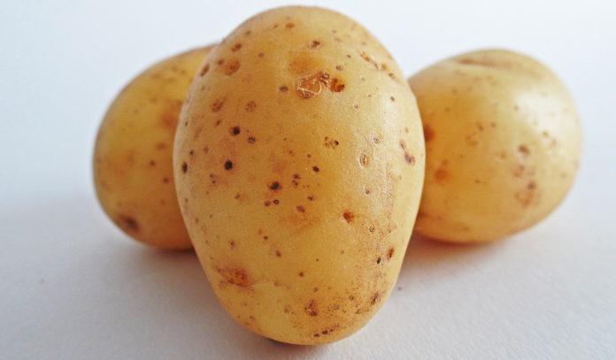 patata d'oro